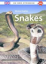 Snakes (De små stribede)