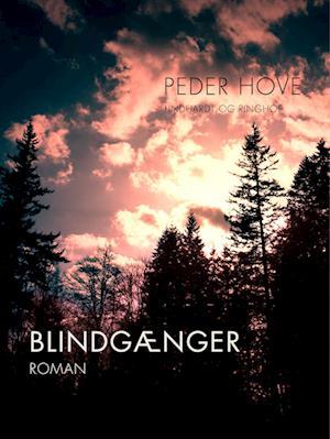Blindgænger af Peder Hove