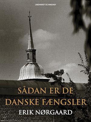 Sådan er de danske fængsler