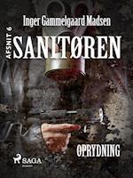 Sanitøren: Oprydning 6 af Inger Gammelgaard Madsen