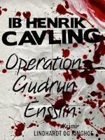 Operation Gudrun Ensslin