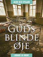 Guds blinde øje af Jacob Bech Nygaard