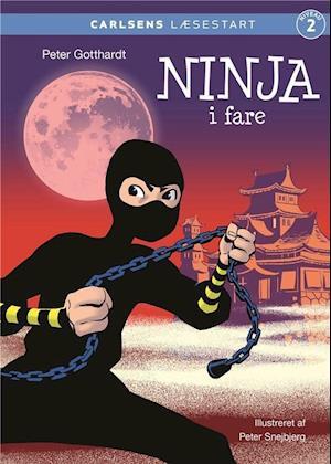 Ninja i fare