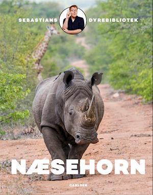 Næsehorn