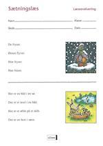 Sætningslæs - læseevaluering (Læseevaluering)
