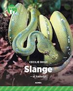 Slange (Fagklub)