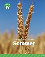 Sommer (Fagklub)