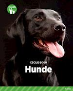 Hunde, Grøn Fagklub (Fagklub)