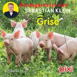 Bondegårdens dyr med Sebastian Klein: Grise