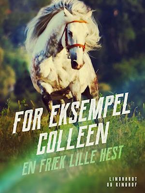 For eksempel Colleen - en fræk lille hest