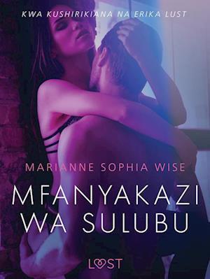Mfanyakazi wa Sulubu - Hadithi Fupi ya Mapenzi