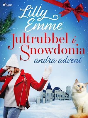 Jultrubbel i Snowdonia: andra advent