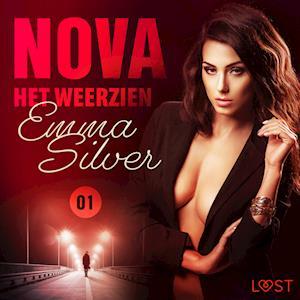 Nova 1: Het weerzien - erotisch verhaal