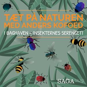 I baghaven - Insekternes Serengeti