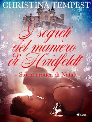 I segreti del maniero di Hvidfeldt - Storia erotica di Natale