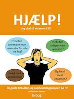 Hjælp! Jeg skal til eksamen i KS af Michael Løhde Andersen