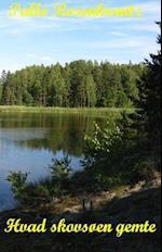 Hvad skovsøen gemte