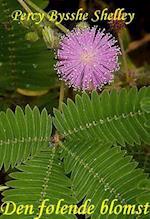 Den følende blomst af Percy Bysshe Shelley
