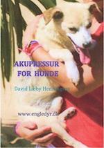 Akupressur for hunde