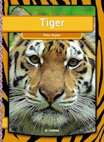 Tiger (Easy reading just for you My first book)