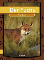 Der Fuchs (Mein erstes Buch)
