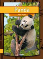 Panda (Min første bog)