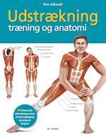 Udstrækning, træning og anatomi