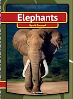 Elefants (My First Book)