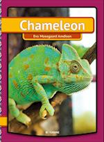Chameleon (My First Book)