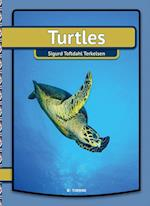 Turtles (My First Book)