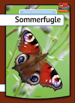 Sommerfugle (Min første bog)