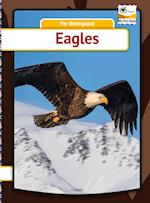 Eagles (My First Book)
