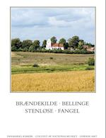 Danmarks Kirker: Odense amt, hft. 30 af Martin Wangsgaard Jürgensen, David Burmeister