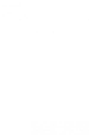 Bog, hardback Når fuglen falder af Claes Blom