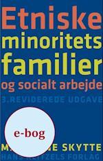 Etniske minoritetsfamilier og socialt arbejde