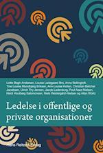 Ledelse i offentlige og private organisationer (Statskundskab)
