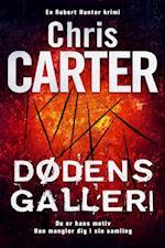 Dødens galleri (Robert Hunter serien 9)