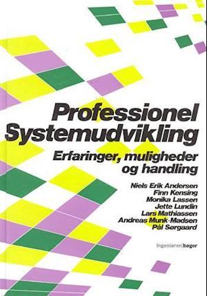 Professionel systemudvikling