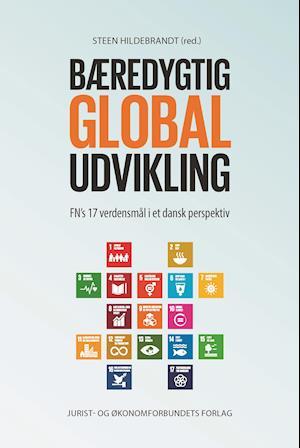 steen hildebrandt Bæredygtig global udvikling-steen hildebrandt-bog på saxo.com