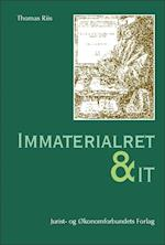 Immaterialret og IT