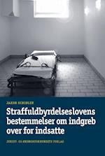 Straffuldbyrdelseslovens bestemmelser om indgreb over for indsatte