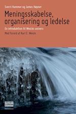 Meningsskabelse, organisering og ledelse