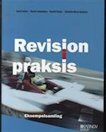 Revision i praksis