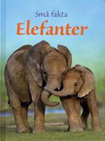 Elefanter (Små fakta)