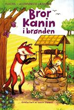 Bror Kanin i brønden (Flachs - allerførste læsning)