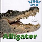 Alligator (Store dyr)