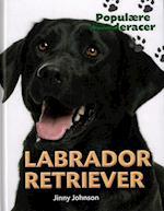 Labrador retriever (Populære hunderacer)