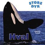 Hval (Store dyr)