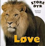 Løve (Store dyr)