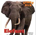Elefant (Store dyr)